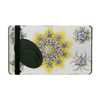 Haeckel Polycyttaria iPad Cover