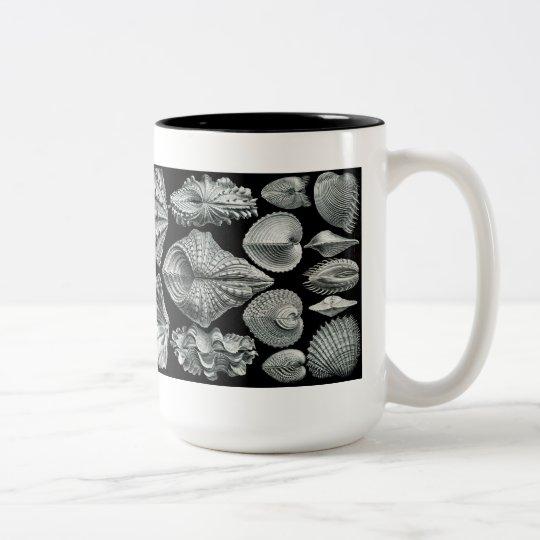 Haeckel Shells Mug