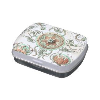Haeckel Trachomedusae Candy Tin