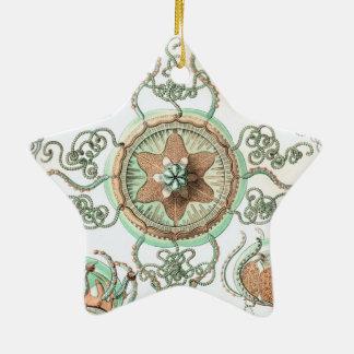 Haeckel Trachomedusae Christmas Ornaments
