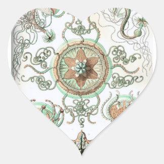 Haeckel Trachomedusae Heart Stickers