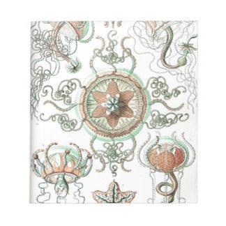 Haeckel Trachomedusae Note Pads