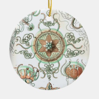 Haeckel Trachomedusae Ornaments