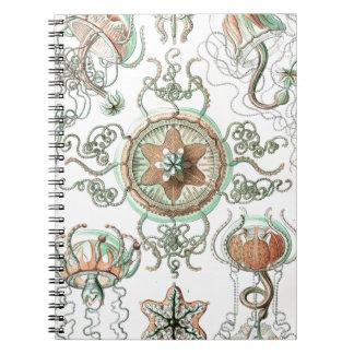 Haeckel Trachomedusae Spiral Notebook