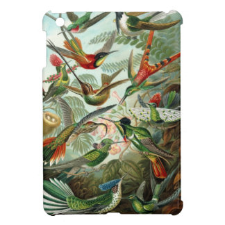 Haeckel Trochilidae iPad Mini Cover