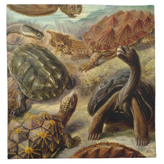 Haeckel Turtles Napkin