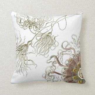 Haeckel vintage sealife cushion