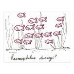 Haemophilus Ducreyi postcard