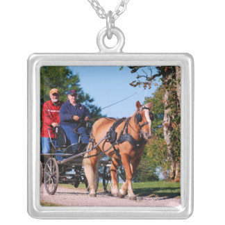 Haflinger at national drive silver plated necklace