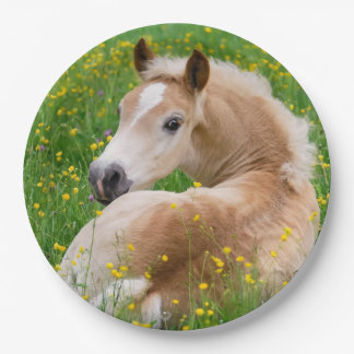 Haflinger Horse Cute Foal in Flowerbed Happy Party 9 Inch Paper Plate