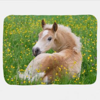 Haflinger Horse Cute Foal Resting Flowerbed, Baby Buggy Blanket
