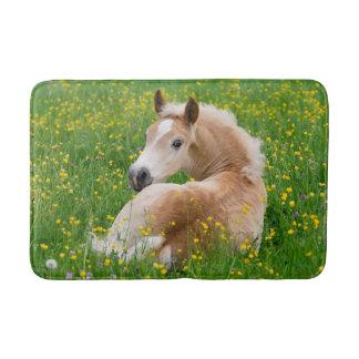 Haflinger Horse Cute Foal Resting Flowerbed, Rug Bath Mats