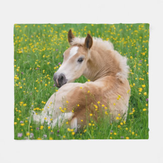 Haflinger Horse Cute Foal Resting Flowerbed, soft Fleece Blanket
