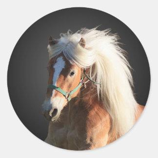 Haflinger Horse Round Sticker