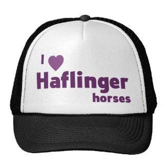 Haflinger horses cap