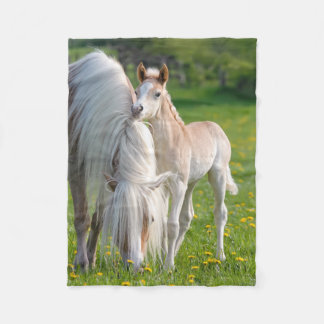 Haflinger Horses Cute Baby Foal With Mum Photo . Fleece Blanket