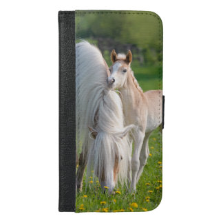 Haflinger Horses Cute Baby Foal With Mum Photo ... iPhone 6/6s Plus Wallet Case