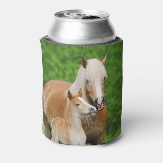 Haflinger Horses Cute Foal Kiss Mum Funny  Bawdle Can Cooler