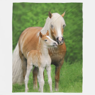 Haflinger Horses Cute Foal Kiss Mum Funny - cozy Fleece Blanket
