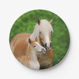 Haflinger Horses Cute Foal Kiss Mum Funny Party 7 Inch Paper Plate
