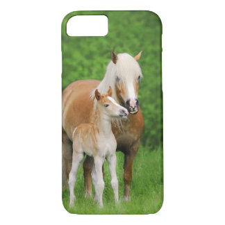 Haflinger Horses Cute Foal Kiss Mum - iPhonecase iPhone 8/7 Case
