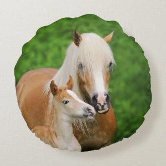 Haflinger Horses Cute Foal Kiss Mum Photo smooth Round Cushion