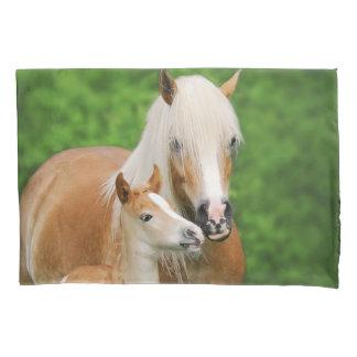 Haflinger Horses Cute Foal Kiss Mum - Pillow-Cover