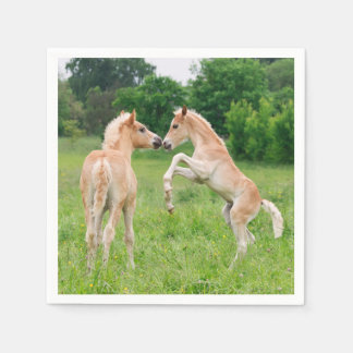 Haflinger Horses Cute Foals Friends Rearing Photo Disposable Napkins