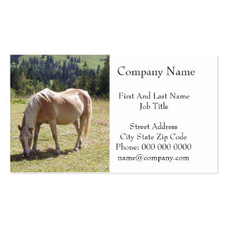 Haflinger Palomino Pony in Green Pasture Photo Pack Of Standard Business Cards