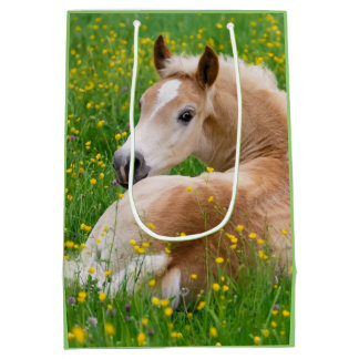 Haflinger Pony Horse Cute Foal in Flowerbed Photo Medium Gift Bag