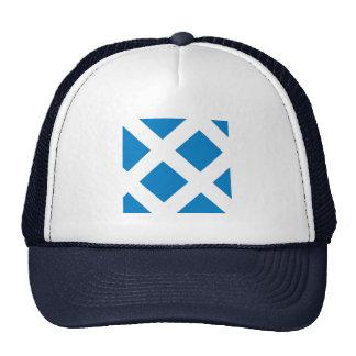Hagi, Yamaguchi Mesh Hat