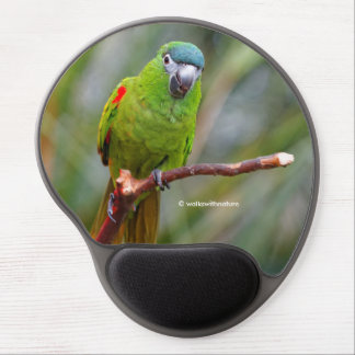 Hahn's Mini Macaw / Red-Shouldered Macaw Gel Mouse Mat