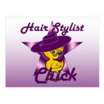 Hair Stylist Chick #9 Postcard