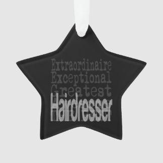 Hairdresser Extraordinaire