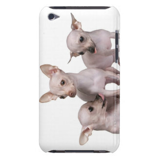 Hairless Chihuahua (5 and 7 months old) Barely There iPod Cases