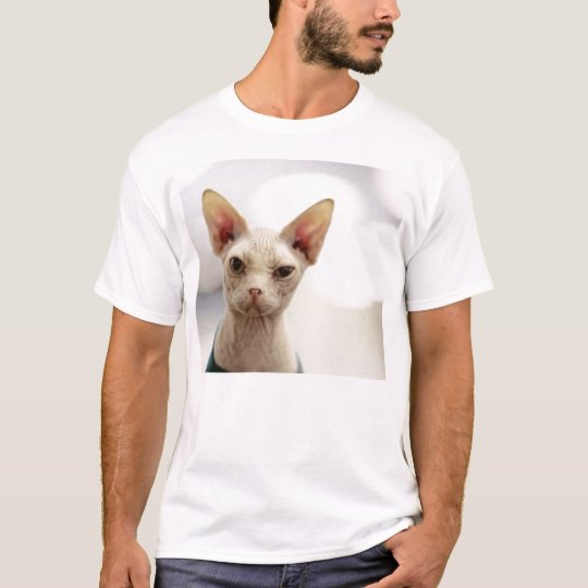 hairless kitty T-Shirt