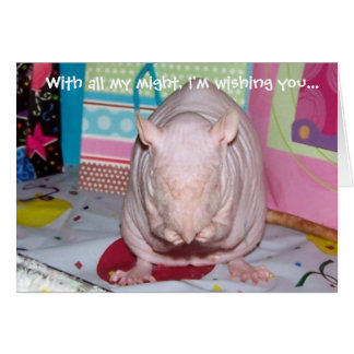 Hairless Pet Rat Birthday Card
