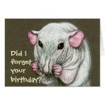 Hairless Rat, Forget Birthday?