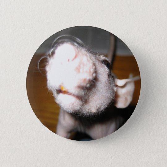 Hairless Rat Love 6 Cm Round Badge