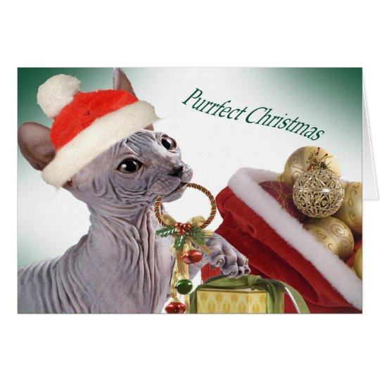 Hairless Sphynx Christmas cards