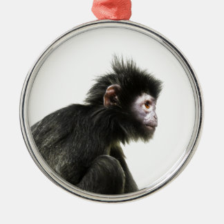 Hairy Baby Monkey Silver-Colored Round Decoration