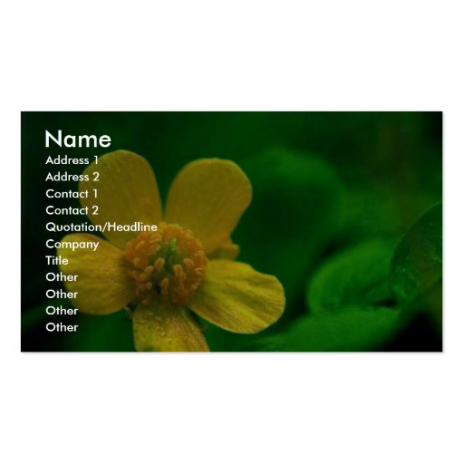 Hairy Buttercup Business Card Templates