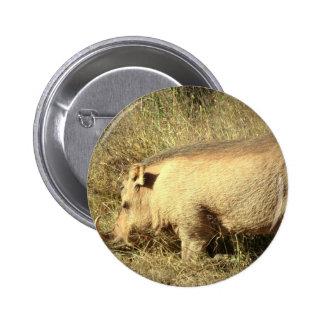Hairy Warthog Button