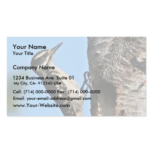 Hairy Woodpecker Business Card Template