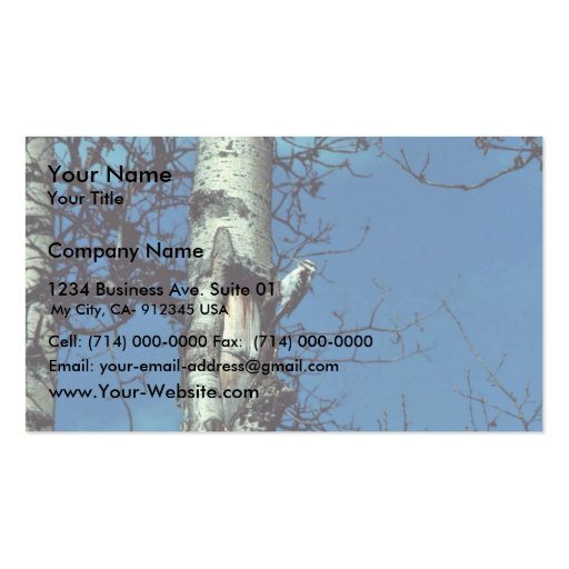 Hairy Woodpecker Business Cards
