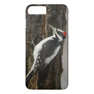 Hairy Woodpecker male on aspen tree, Grand Teton iPhone 8 Plus/7 Plus Case