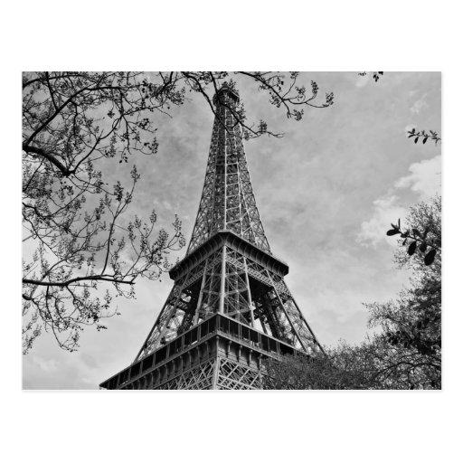 Half a Eiffel Tower Post Card