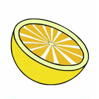 Half a Lemon Photo Sculptures