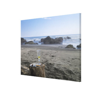 Half-eaten meat and champagne canvas print