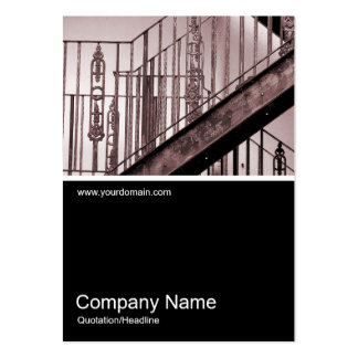 Half&Half Photo 0159 - Victorian Fire Escape Pack Of Chubby Business Cards